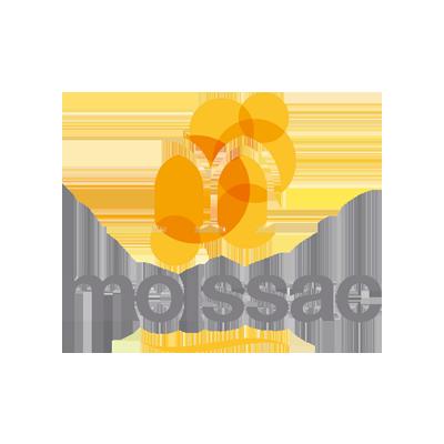 Ville Moissac